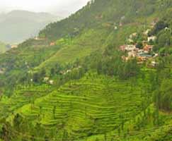 Tour Package In Uttarakhand