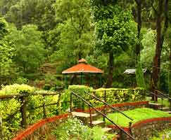 Uttarakhand Tourism Package