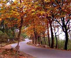Tour Package Uttarakhand